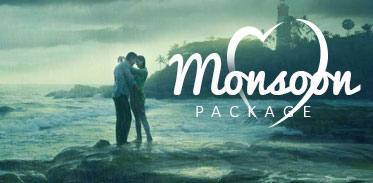 Best Honeymoon Couple Packages in Kerala |  Kerala Honeymoon Couple Package